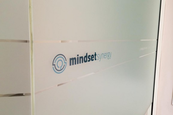 Print & Install Only - Mindset Synergy